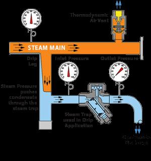 Watson Mcdaniel Steam Traps Sizing